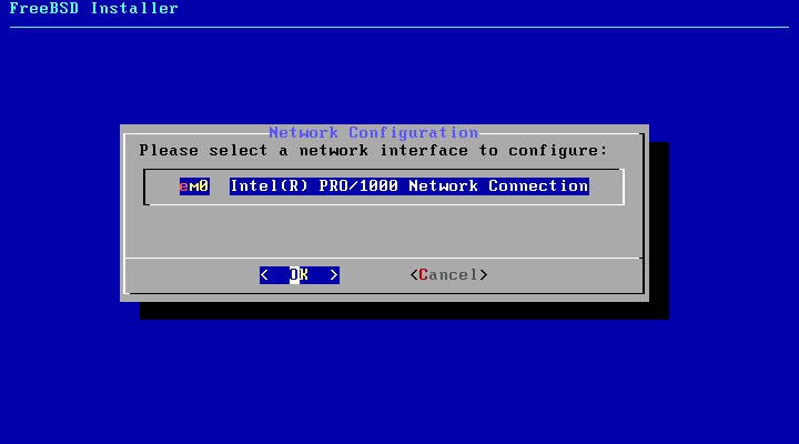 FreeBSD インストール ネットワークアダプタ