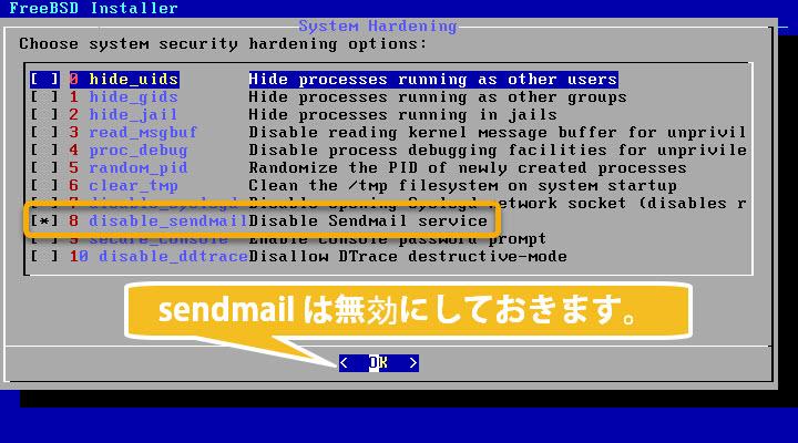 FreeBSD インストール システム決定